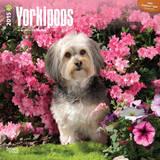Yorkipoos - 2015 Calendar Calendars