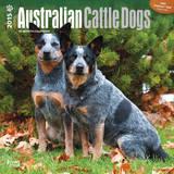 Australian Cattle Dogs - 2015 Calendar Calendriers