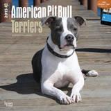 American Pit Bull Terriers - 2015 Calendar Calendars