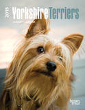 Yorkshire Terriers - 2015 Engagement Calendar Calendars