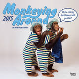 Monkeying Around - 2015 Calendar Calendars