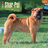 Shar-Pei - 2015 Calendar Calendars