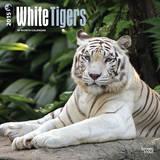 White Tigers - 2015 Calendar Calendars