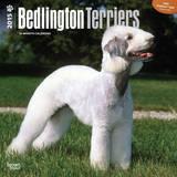 Bedlington Terriers - 2015 Calendar Calendars