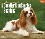 For the Love of Cavalier King Charles Spaniels - 2015 Deluxe Calendar Calendars