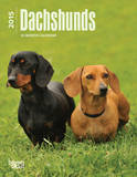 Dachshunds - 2015 Engagement Calendar Calendars