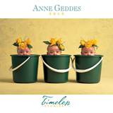 Anne Geddes - 2015 Timeless Calendar Calendars