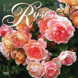 Roses - 2015 Calendar Calendars