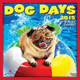 Dog Days - 2015 Calendar Calendars