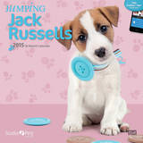 By Myrna - Jumping Jack Russells - 2015 Calendar Calendars