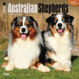Australian Shepherds - 2015 Calendar Calendars