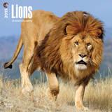 Lions - 2015 Calendar Calendars