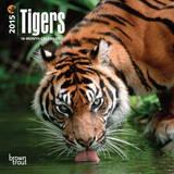 Tigers - 2015 Mini Calendar Calendars