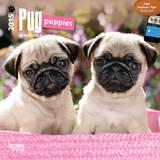 Pug Puppies - 2015 Mini Calendar Calendars