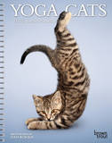 Yoga Cats - 2015 Engagement Calendar Calendars