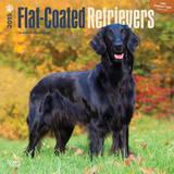 Flat-Coated Retrievers - 2015 Calendar Calendars