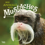 Animals with Mustaches - 2015 Calendar Calendars