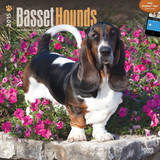 Basset Hounds - 2015 Calendar Calendars