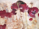 Dreamtime Poppies Art by Matina Theodosiou