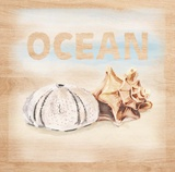 Natural Ocean Words Poster by  Art Atelier Alliance