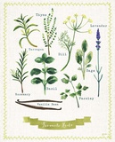 Favourite Herbs Prints by Bella Dos Santos