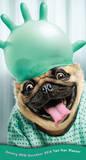 Dog Days - 2015 Pocket Planner Calendars