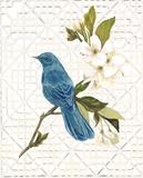 Trellis Song Affiches par Colleen Sarah