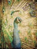 Regal Peacock Art by  Z Studio