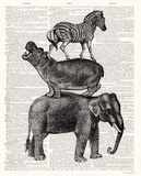 Animal Ride Elephant Prints by Christopher James