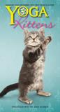 Yoga Kittens - 2015 Pocket Planner Calendars