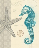 Sea Life 2 Prints by  Z Studio