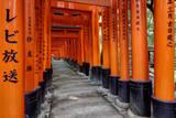 Japan, Kyoto. Torii Gates in the Fushimi-Inari-Taisha Shinto Shrine. Photographic Print by Dennis Flaherty