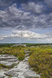 USA, West Virginia, Davis. Landscape in Dolly Sods Wilderness Area. Photographic Print by Jay O'brien