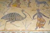 Mosaics, Moses Memorial Church, Mount Nebo, East Bank Plateau, Jordan. Photographic Print by Nico Tondini