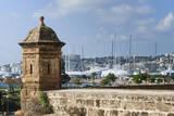 City ramparts, Palma de Mallorca, Majorca, Balearic Islands, Spain. Photographic Print by Nico Tondini