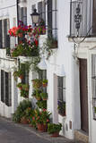 Spain, Andalucia Region, Cadiz, Grazalema. Potted plants by a home. Photographic Print by Julie Eggers