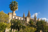 Royal Palace of La Almudaina and Cathedral, Palma, Majorca, Spain. Photographic Print by Nico Tondini