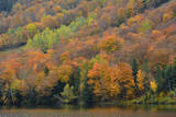 Autumn on Echo Lake, Franconia Notch State Park, New Hampshire, USA Photographic Print by Michel Hersen