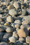 USA, Massachusetts, Gosnold. Rocky shoreline of Cuttyhunk island. Fotodruck von Cindy Miller Hopkins