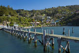 Jetty, Carey's Bay, Dunedin, Otago, South Island, New Zealand. Photographic Print by David Wall