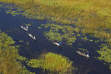 Tourists in mekoro, Okavango Delta, Botswana Photographic Print by David Wall