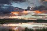 Clouds reflecting into beaver pond at sunset, Glacier NP, Montana, USA Stampa fotografica di Chuck Haney