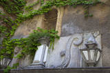 Spain, Granada. Ivy growing on the walls of the Alhambra. Photographic Print by Julie Eggers
