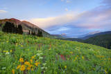 USA, Colorado, Crested Butte. Landscape of wildflowers and mountains. Photographic Print by Dennis Flaherty