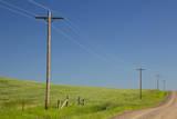 USA, Montana, Fergus County, Power poles. Photographic Print by Jamie & Judy Wild