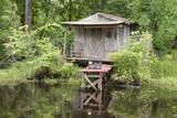 USA, Louisiana, New Orleans, Lafitte, Jean Lafitte NHP. Bayou cabin. Fotografisk tryk af Cindy Miller Hopkins