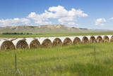 USA, Montana, Chouteau County, Hay bales and farmland. Photographic Print by Jamie & Judy Wild