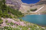 USA, Montana, Glacier NP. Alpine Ptarmigan Lake. Photographic Print by Trish Drury
