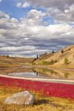 Grassland landscape, Lac Du Bois Grasslands Park, Kamloops, BC, Canada Photographic Print by Don Paulson