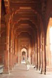 Jama Masjid, Fatehpur Sikri, Uttar Pradesh, India. Photographic Print by Inger Hogstrom